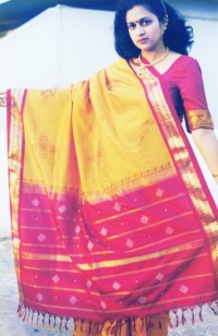 Pure Silk Kanchi Saree with embroidery